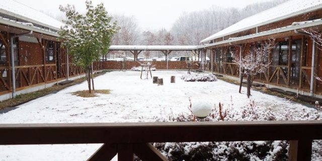 開発センターの雪