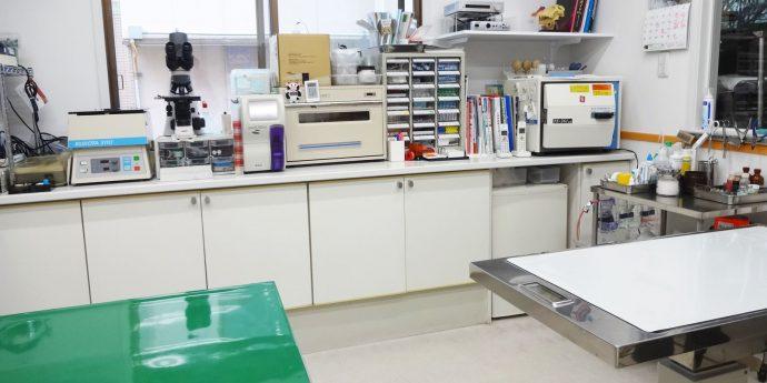 もえぎの動物病院診察室